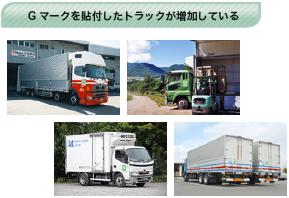 Gマークを貼付したトラックが増加している